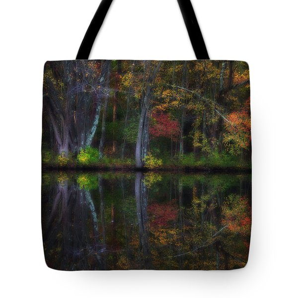 Colorful Forest Tote Bag by Karol Livote
