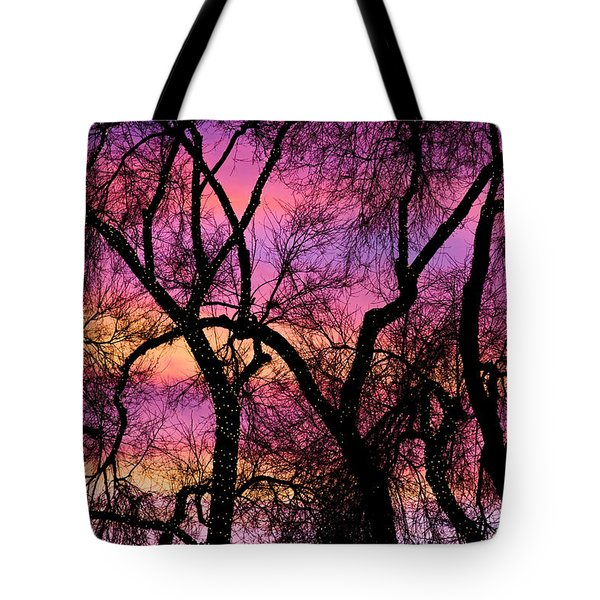 Colorful Silhouetted Trees 21 Tote Bag by James BO  Insogna