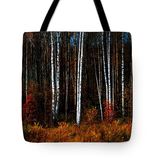 Colors Of Fall Tote Bag by Jenny Rainbow