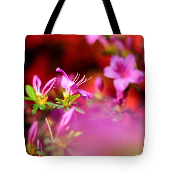 Colors Tote Bag by Rebecca Sherman