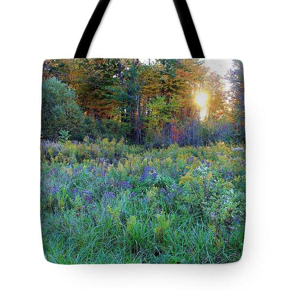 Columbia's Landscape Tote Bag
