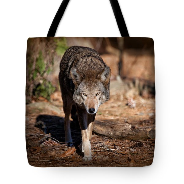 Coming Right At You Tote Bag by Karol Livote
