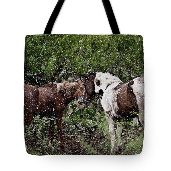 Companionship Tote Bag by Dinah Anaya