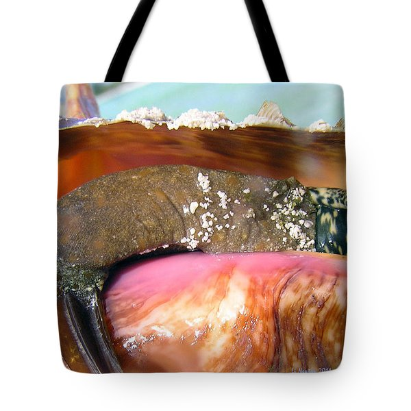 Conch Face- Who Knew Tote Bag by Li Newton