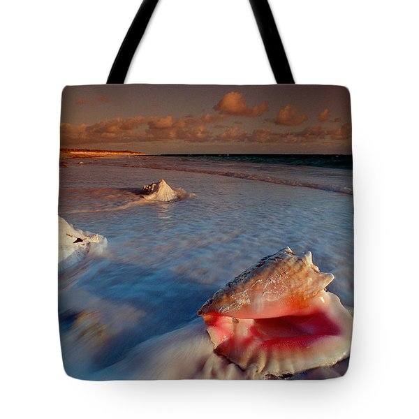 Conch Shell On Beach Tote Bag by Novastock and Photo Researchers