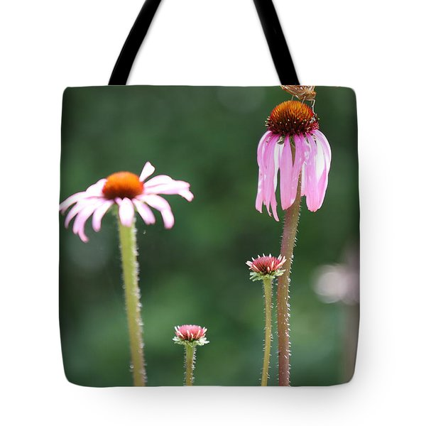 Coneflowers And Butterfly Tote Bag