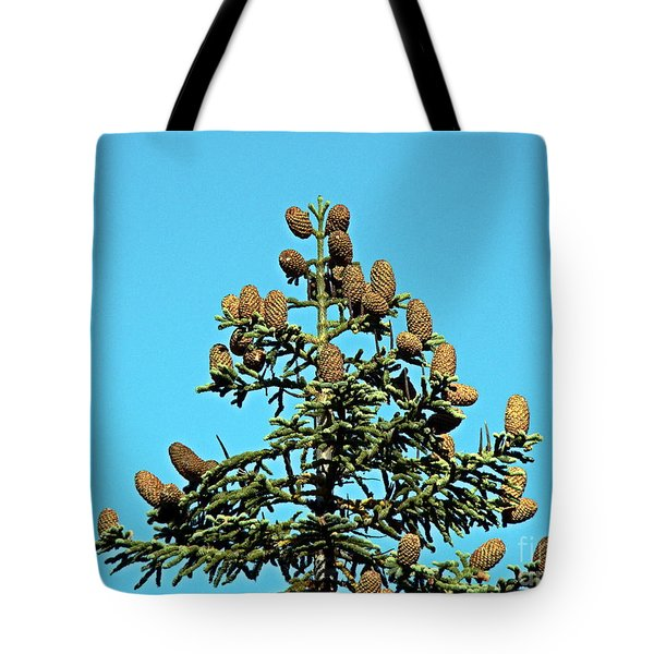 Tote Bag featuring the photograph Cones by Nick Kloepping