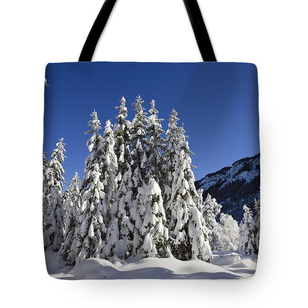 Coniferous Forest In Winter Tote Bag by Konrad Wothe