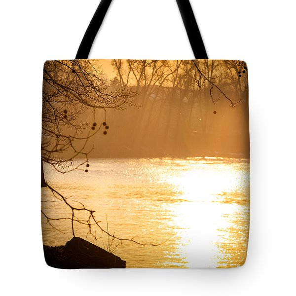 Tote Bag featuring the photograph Contemplating by Sonny Marcyan