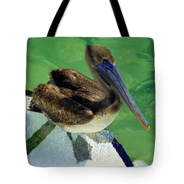 Cool Footed Pelican Tote Bag by Karen Wiles