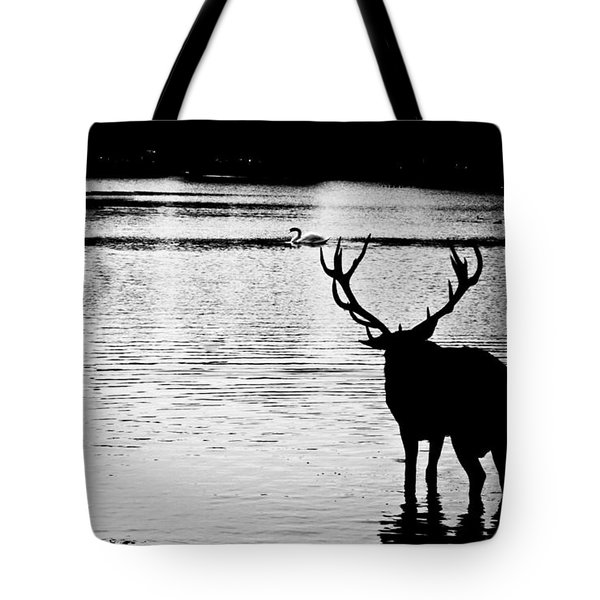 Tote Bag featuring the photograph Cooling Off Deer by Maj Seda