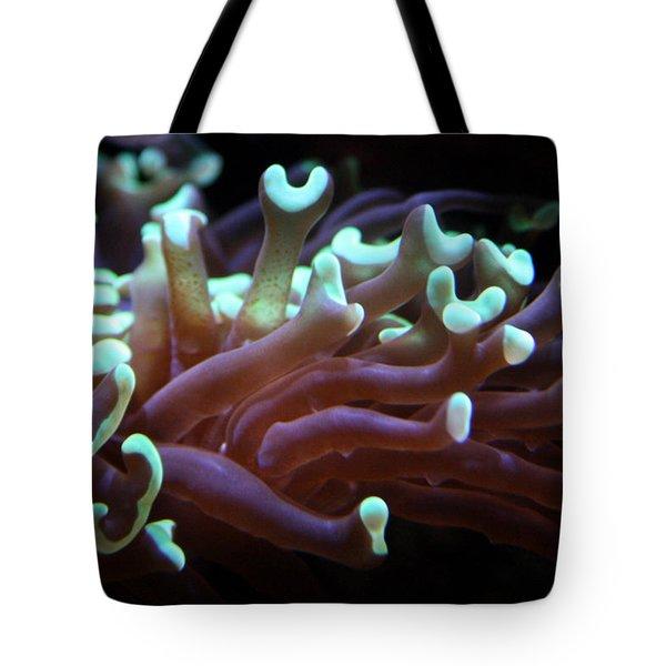 Coral 1  Tote Bag