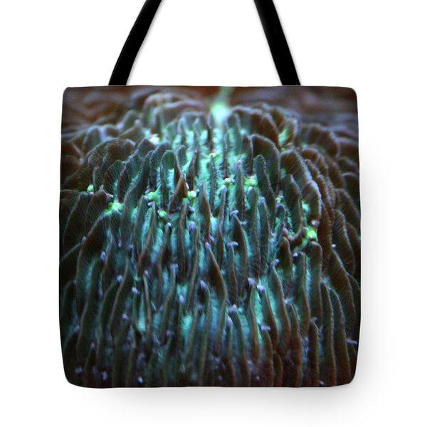 Coral 2 Tote Bag
