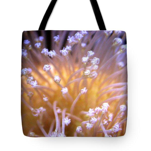 Coral 3 Tote Bag