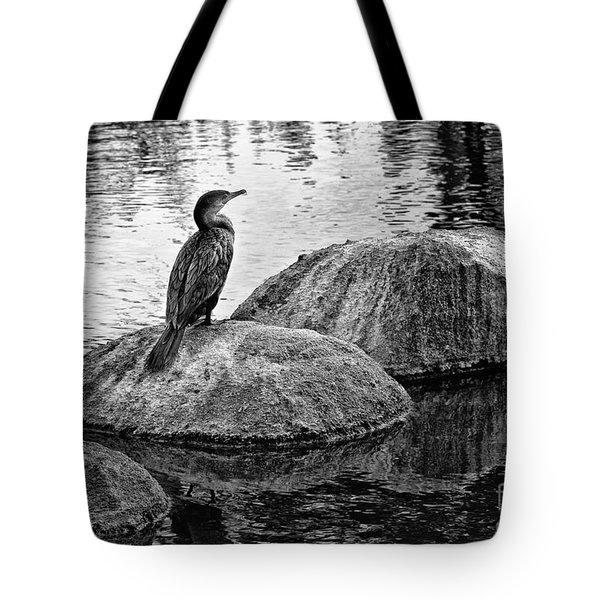 Tote Bag featuring the photograph Cormorant On Rocks by Jim Moore