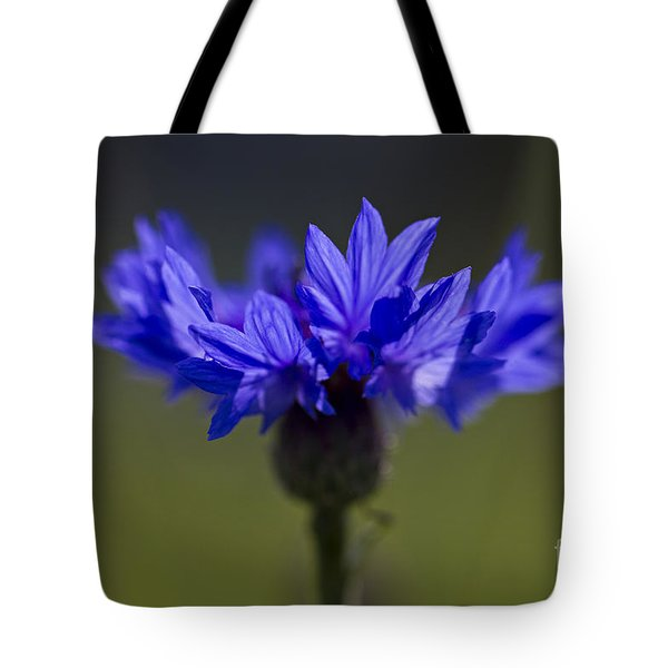 Cornflower Blue Tote Bag
