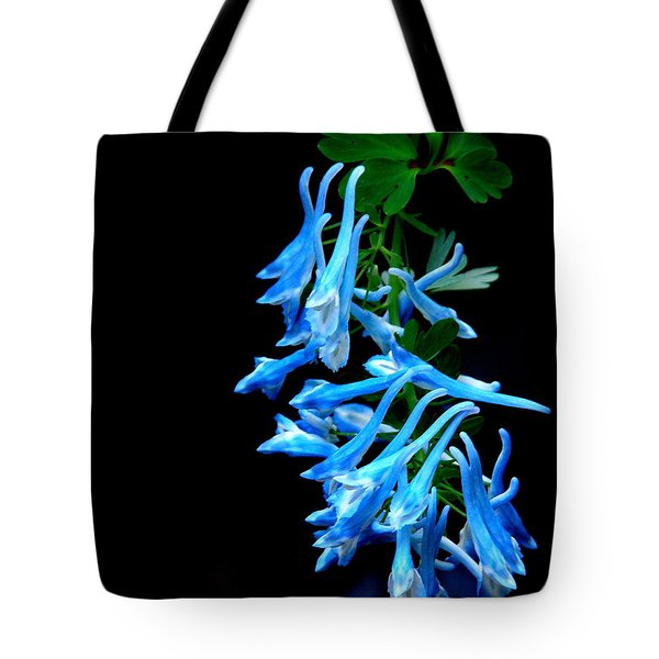 Corydalis  Tote Bag by Tanya  Searcy