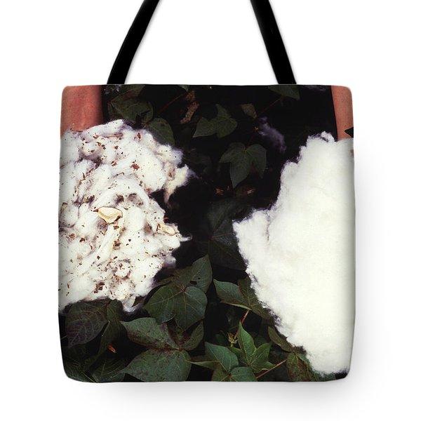 Cotton Comparison Tote Bag by Photo Researchers