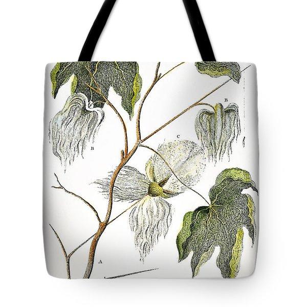 Cotton Plant, 1796 Tote Bag by Granger
