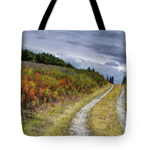 Country Road In Fall Tote Bag by Michele Cornelius