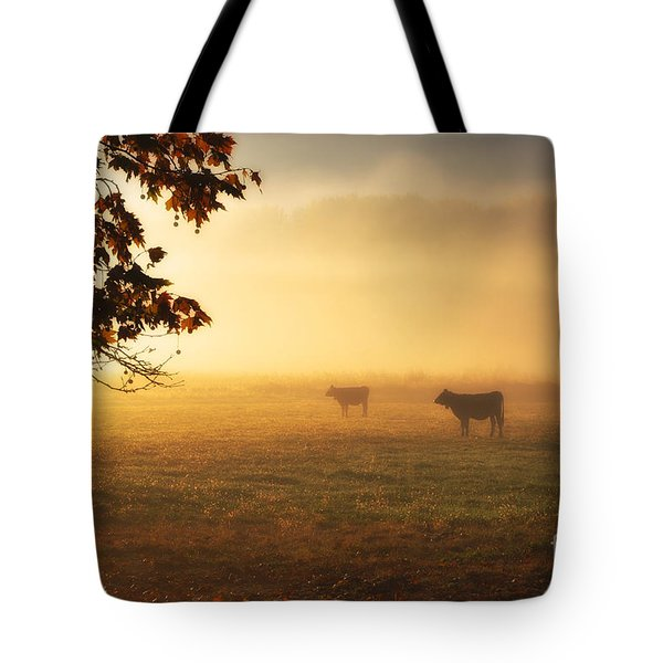 Cows In A Foggy Field Tote Bag