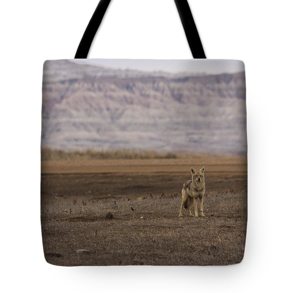 Coyote Badlands National Park Tote Bag