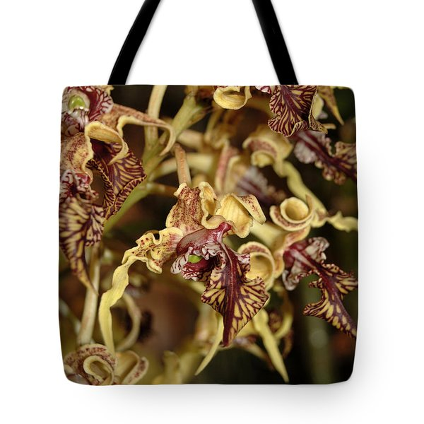 Tote Bag featuring the photograph Crazy Curly Orchid by Eva Kaufman