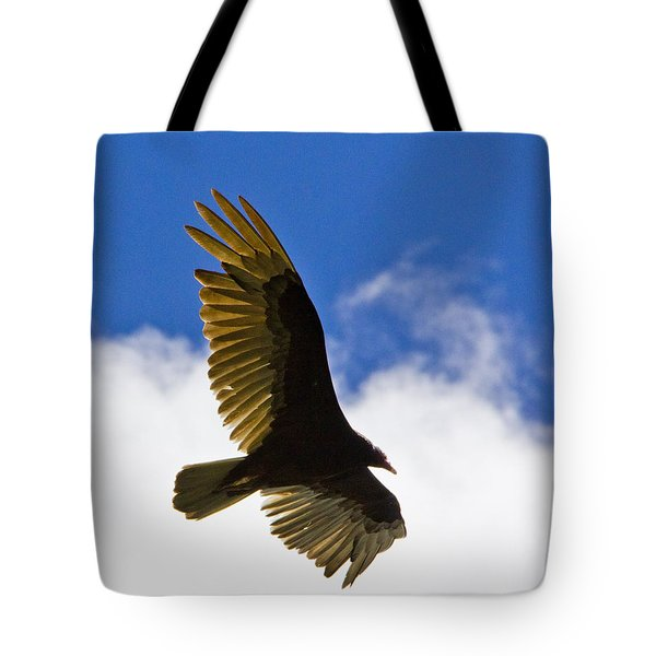 Crested Caracara Tote Bag by Roger Wedegis