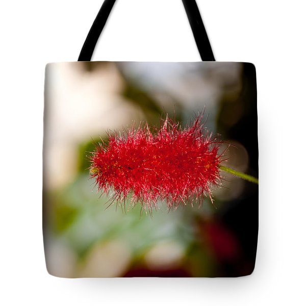 Tote Bag featuring the photograph Crimson Bottle Brush by Tikvah's Hope