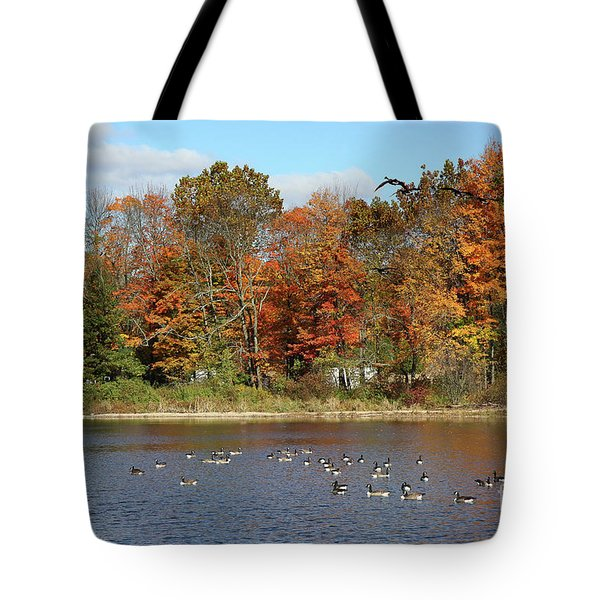 Ct Autumn Colors Tote Bag