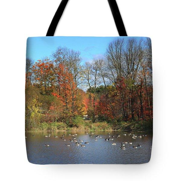 Ct Autumn Lake. Tote Bag