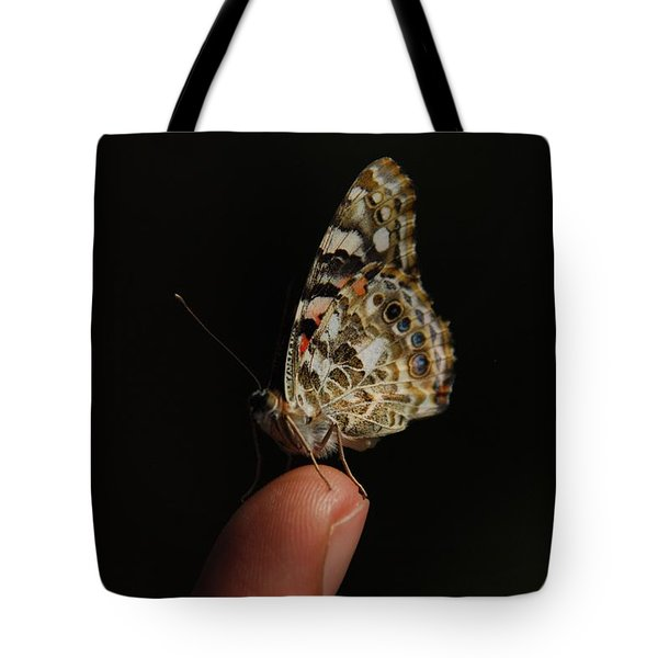 Tote Bag featuring the photograph Curious Butterfly by Tam Ryan