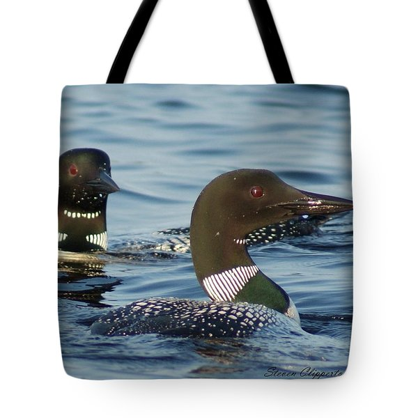 Curious Loons Tote Bag by Steven Clipperton