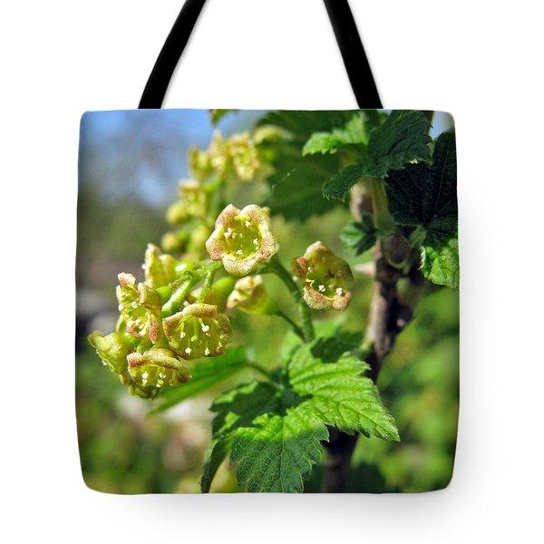 Currant In Bloom Tote Bag by Ausra Huntington nee Paulauskaite