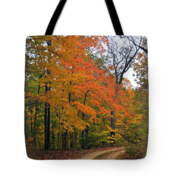 Curve In Fall Tote Bag by Marty Koch