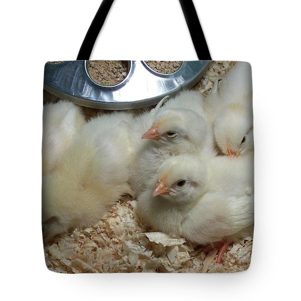 Tote Bag featuring the photograph Cute And Fuzzy Chicks by Chalet Roome-Rigdon
