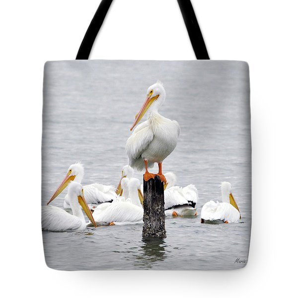 Cute Feet Tote Bag