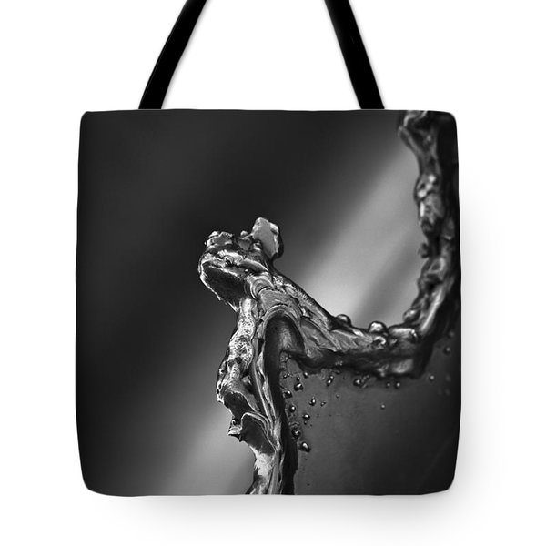Cutting Edge Sibelius Monument Tote Bag by Clare Bambers