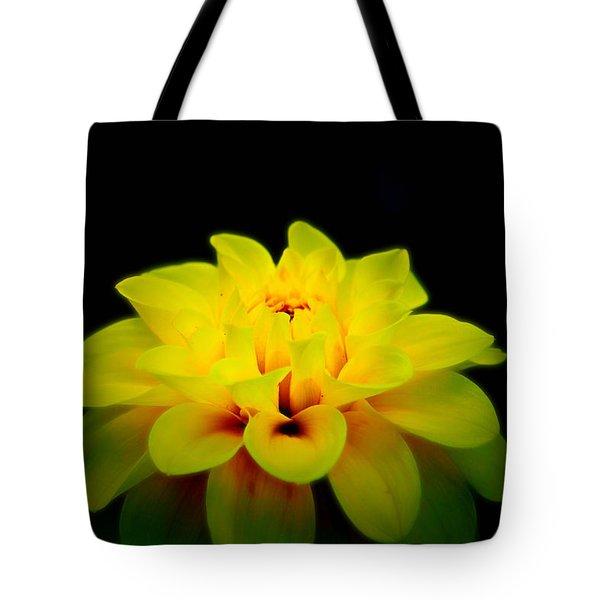 Dahlia Delight Tote Bag by Jeanette C Landstrom