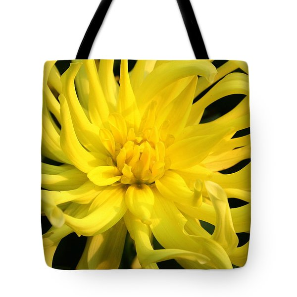 Tote Bag featuring the photograph Dahlia In Yellow by Laurel Talabere