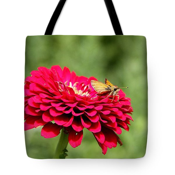 Tote Bag featuring the photograph Dahlia's Moth by Elizabeth Winter