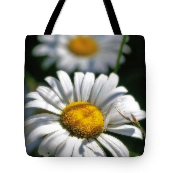 Daisies Aglow Tote Bag