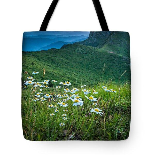 Daisies In The Mountyain Tote Bag
