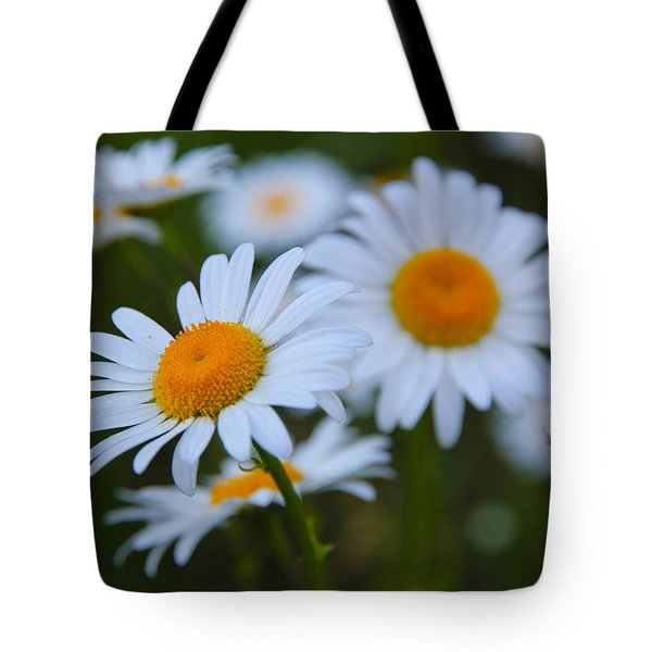 Tote Bag featuring the photograph Daisy by Athena Mckinzie