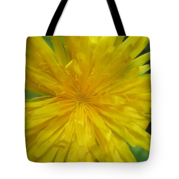 Dandelion Close Up Tote Bag by Kym Backland