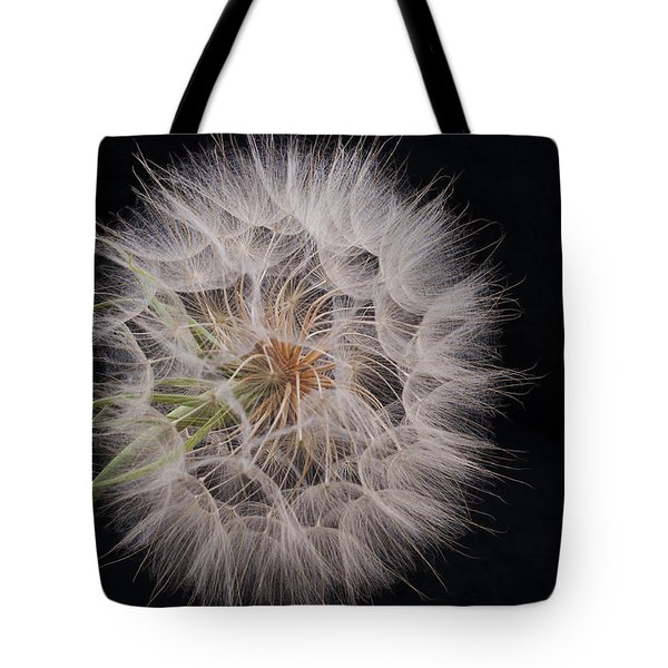 Dandelion Silhouette Tote Bag by Ivelina G