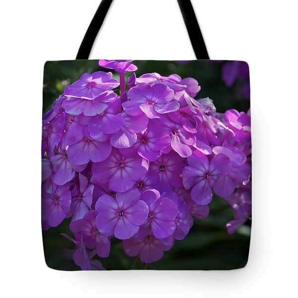 Tote Bag featuring the photograph Dappled Light by Joseph Yarbrough