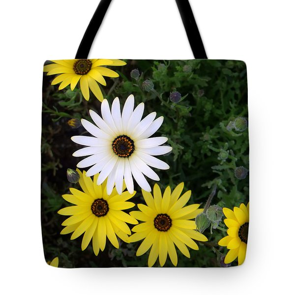 Dare To Be Different Tote Bag by Mistys DesertSerenity
