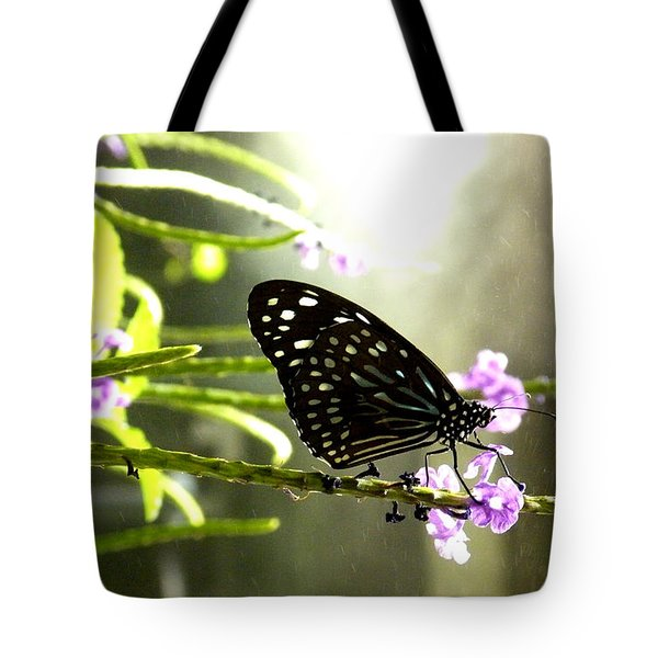 Dark Blue Tiger Butterfly In The Rain Tote Bag