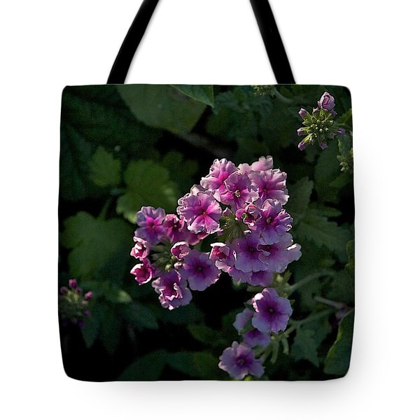 Tote Bag featuring the photograph Dark by Joseph Yarbrough